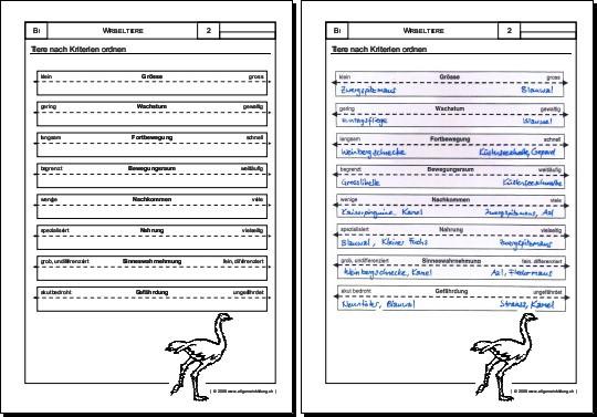 arbeitsblatt vorschule 187 unterrichtsmaterial mathematik