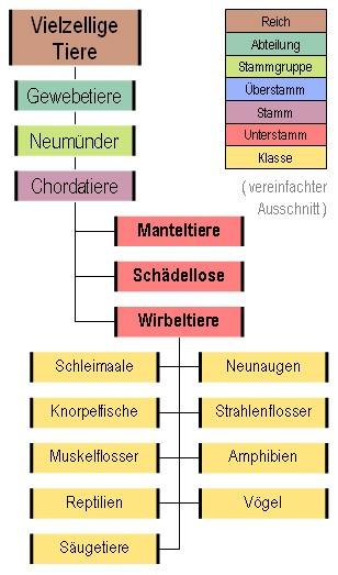 kostenlose online partnersuche Ludwigsburg