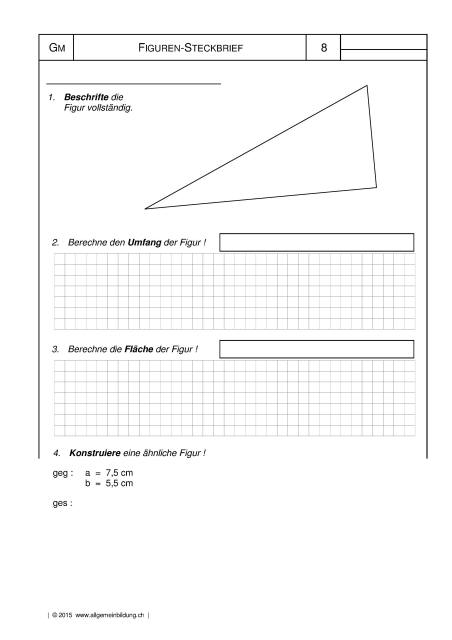 mathematik geometrie arbeitsblatt rechtwinkliges dreieck figuren steckbrief 8500 bungen. Black Bedroom Furniture Sets. Home Design Ideas