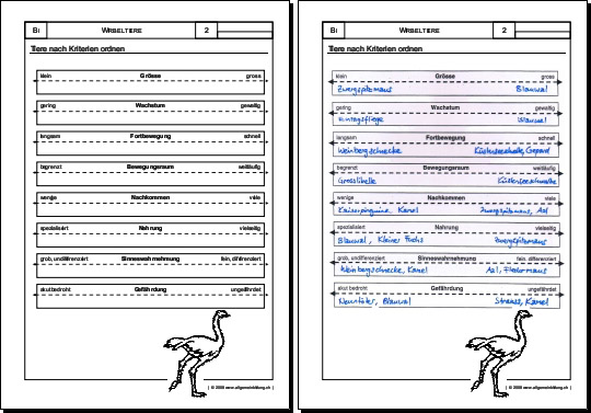 Biologie | Arbeitsblatt Ordnungskriterien | 8500 Übungen ...