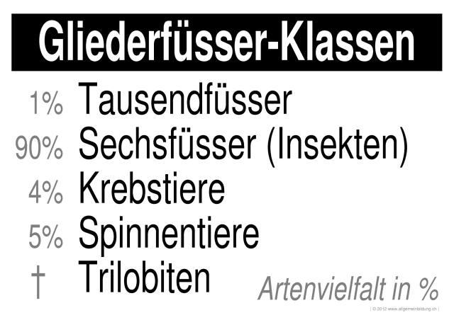 Biologie | LernPlakate Wissensposter Gliederfüsser-Klassen | 8500 ...