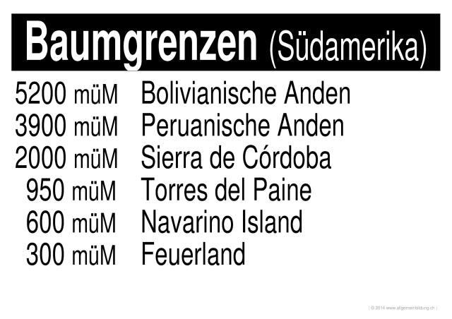 Geografie   LernPlakate WissensPoster Baumgrenzen : Südamerika ...