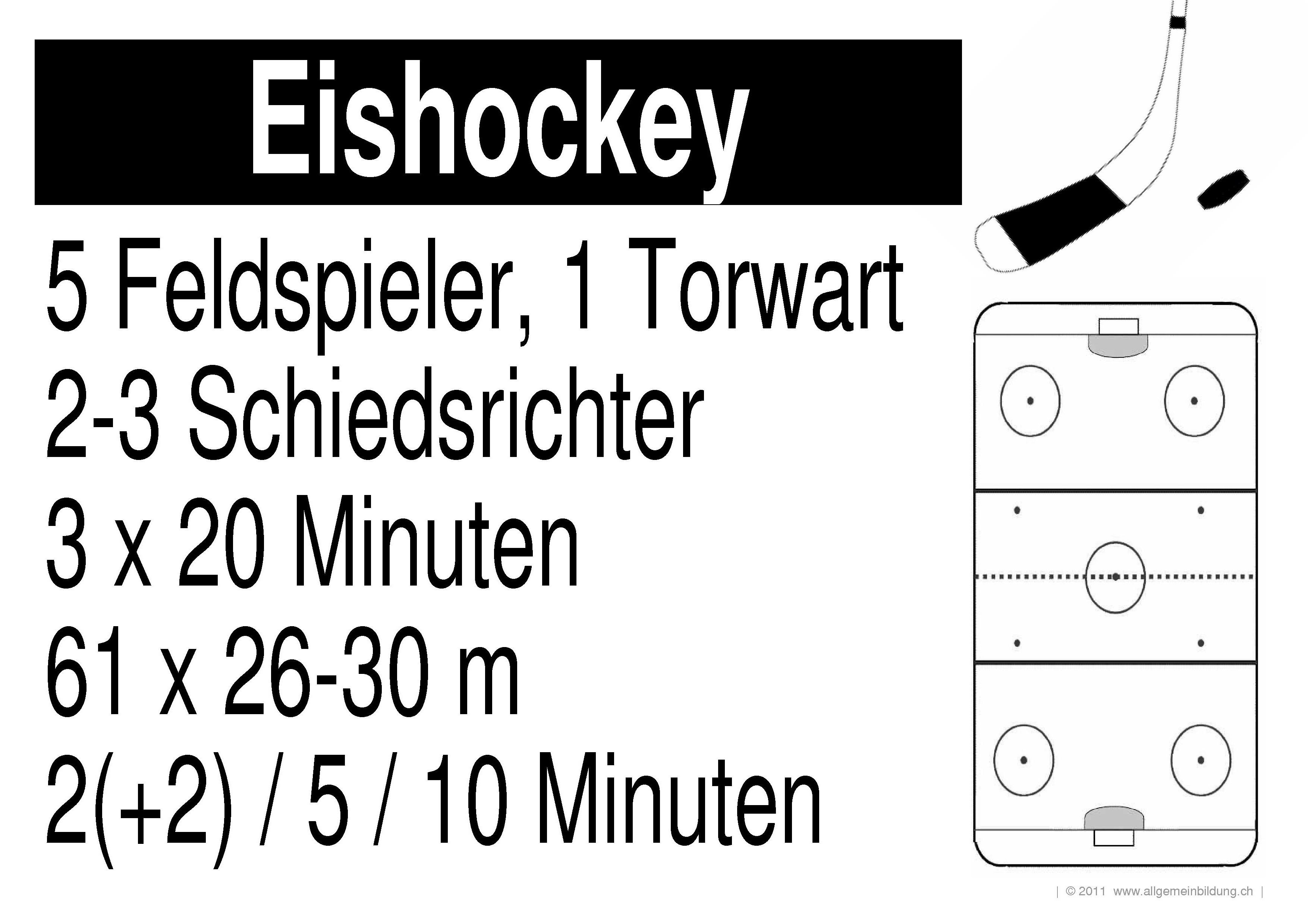 Sport & Spiel   LernPlakate WissensPoster Eishockey   8500 Übungen ...