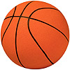 the basketball | le basket-ball