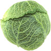 cabbage | chou
