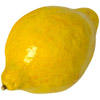 the lemon | le citron